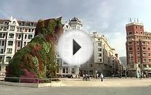 Study Abroad in Bilbao, Spain - USAC Study Abroad Program