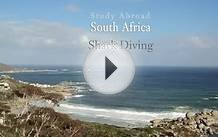 Study Abroad - South Africa: Shark Diving & Kruger